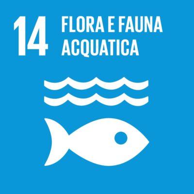 Obiettivo 14 - Flora e fauna acquatica
